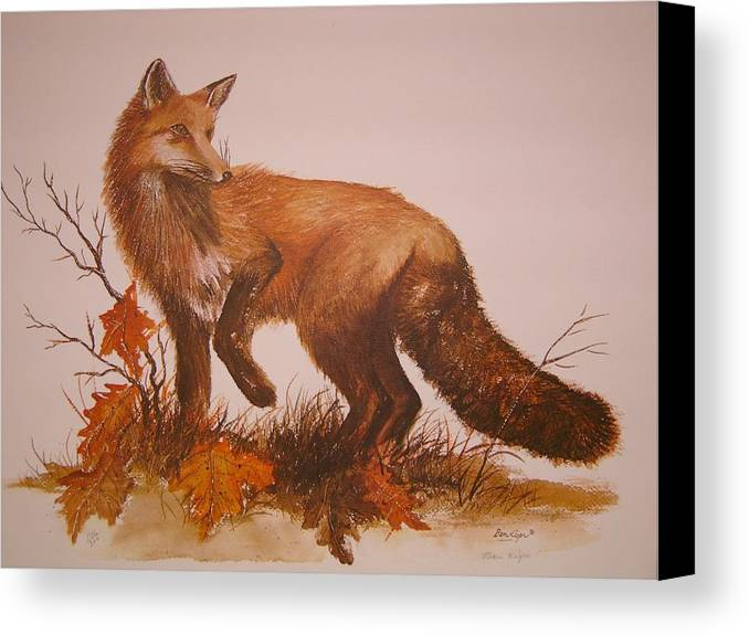 Nature Canvas Print featuring the painting Red Fox by Ben Kiger