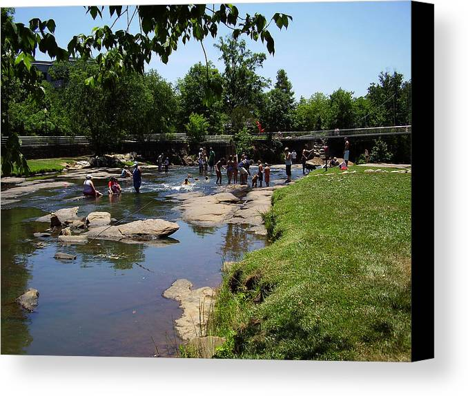 Reedy River Canvas Print featuring the photograph Reedy River by Flavia Westerwelle