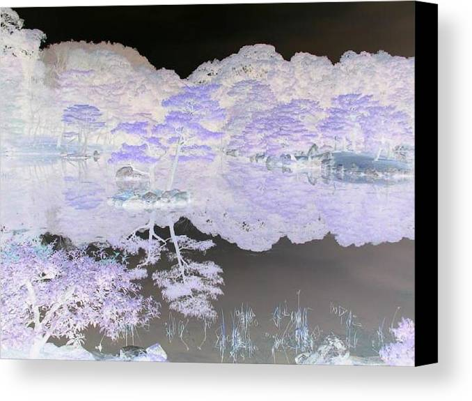 Reflection Canvas Print featuring the photograph Reflections On A Surreal Pond by Curtis Schauer