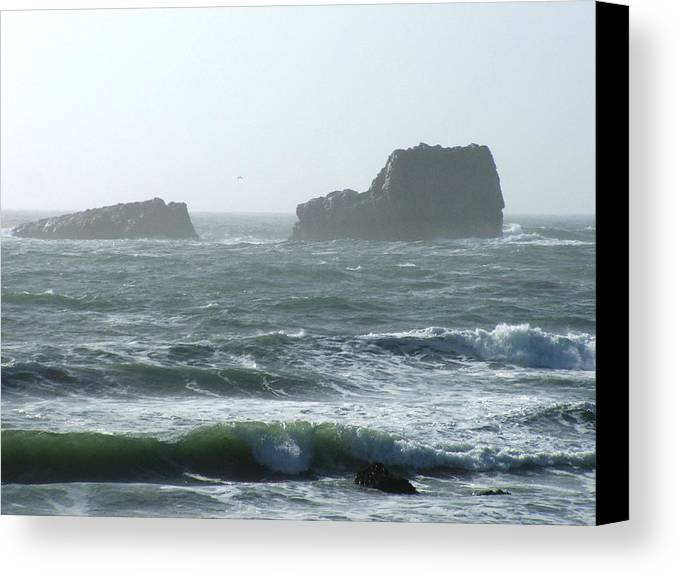 Oceanes Canvas Print featuring the photograph Rough Waters by Shari Chavira