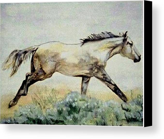 Quarter Horse Canvas Print featuring the painting Sage Runner by Debra Sandstrom