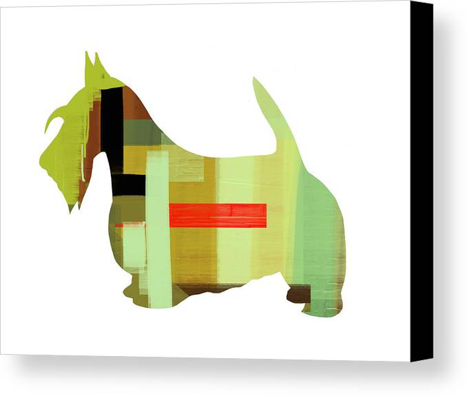 Scottish Terrier Canvas Print featuring the painting Scottish Terrier by Naxart Studio