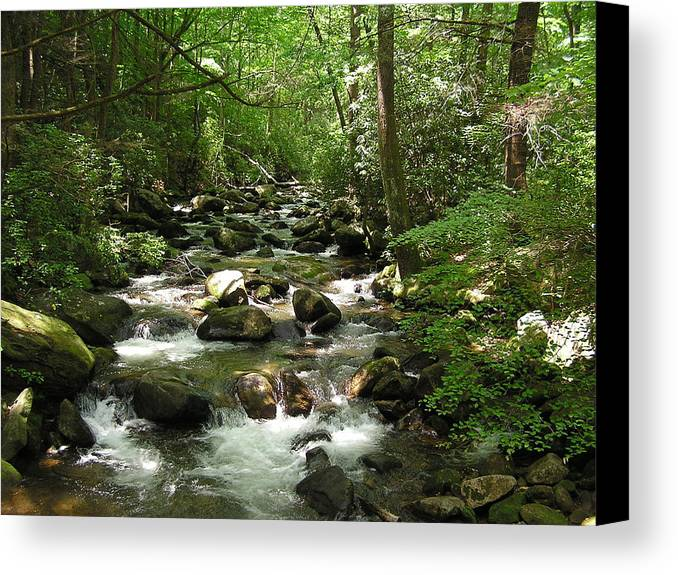 Mountain Stream Canvas Print featuring the photograph Serenity by Diane Frick