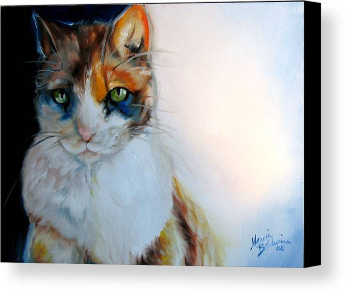 Cat Canvas Print featuring the painting Shy Calli by Marcia Baldwin