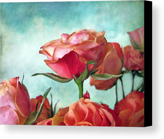 Flower Canvas Print featuring the photograph Skyward by Jessica Jenney