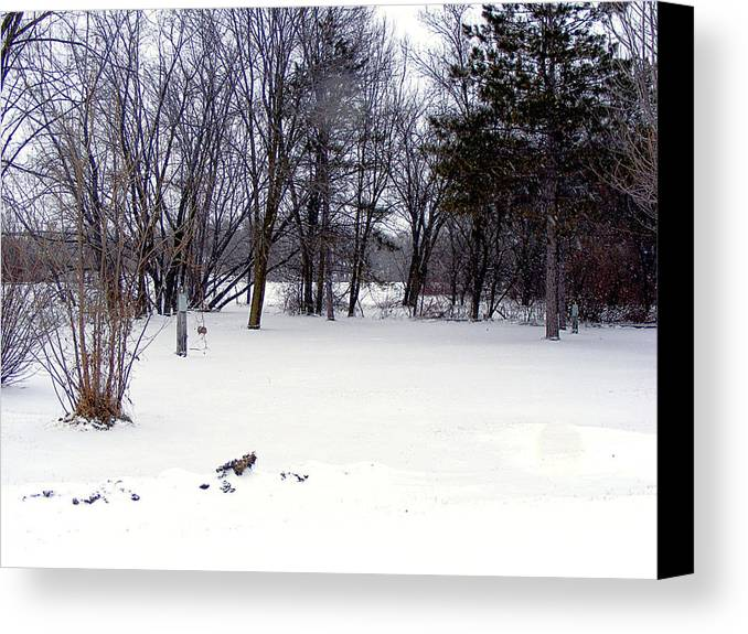 Snow Canvas Print featuring the photograph Snow by Cindy Yeakel