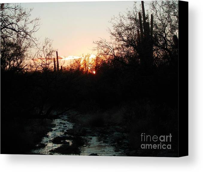 Sonoran Desert Wash Canvas Print featuring the photograph Sonoran Sundown by Jerry Bokowski
