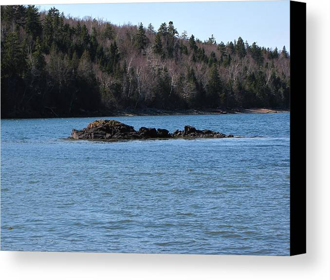 Seascape Canvas Print featuring the photograph Spring Seascape by Melissa Parks