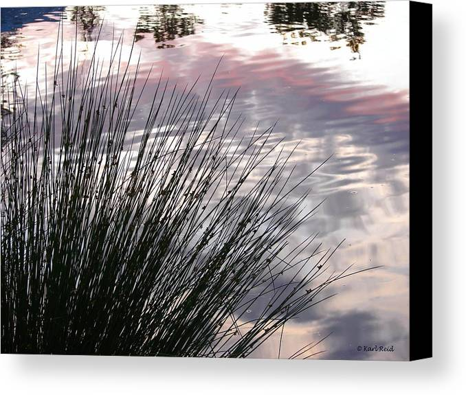 Reeds Canvas Print featuring the photograph Summer Sunset by Karl Reid