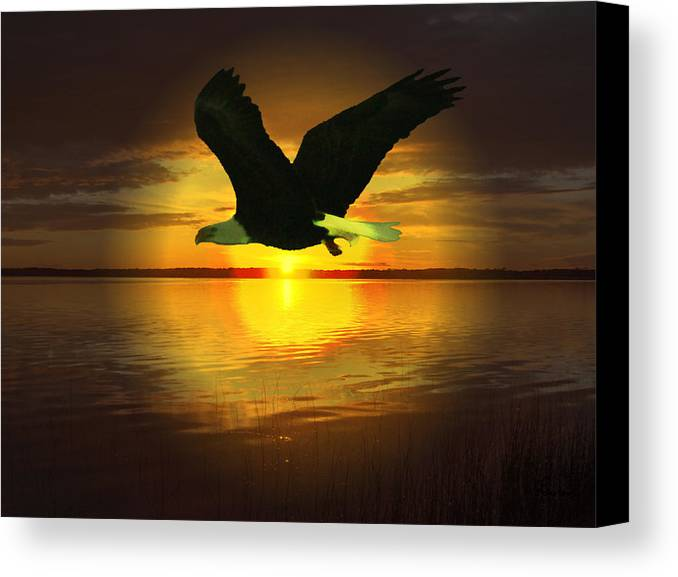 Sunset Eagle Water Lake Birds Of Prey Hunting Flying Skyscape Canvas Print featuring the photograph Sunset Eagle by Andrea Lawrence