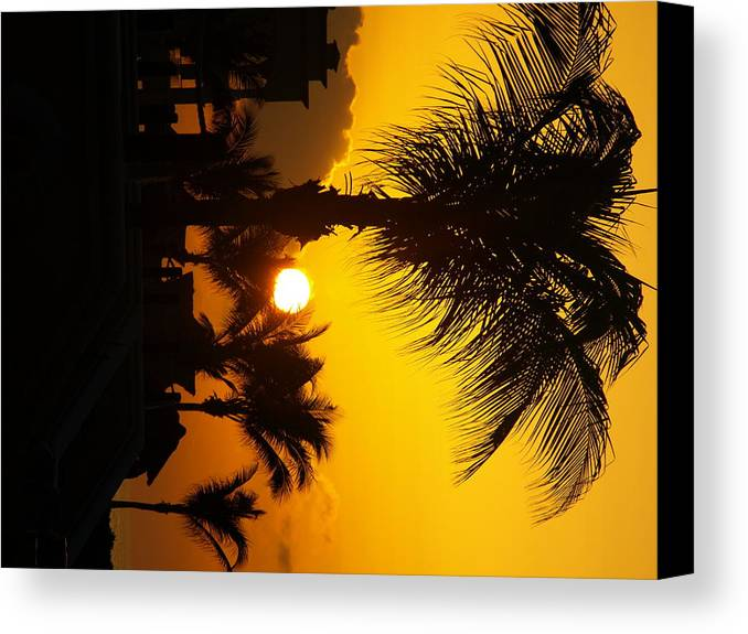 Landscape Canvas Print featuring the photograph Sunset Palm by Randall Slinkard