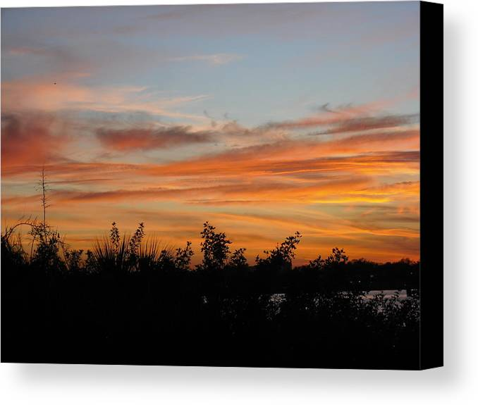 Sun Canvas Print featuring the photograph Sunset Silhouette by Mandy Shupp