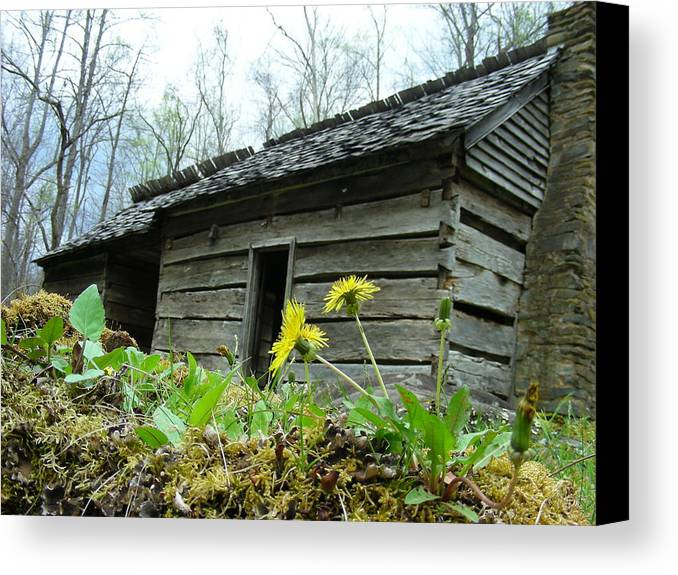 Tennessee Canvas Print featuring the photograph Tennessee Homestead by Linda Russell