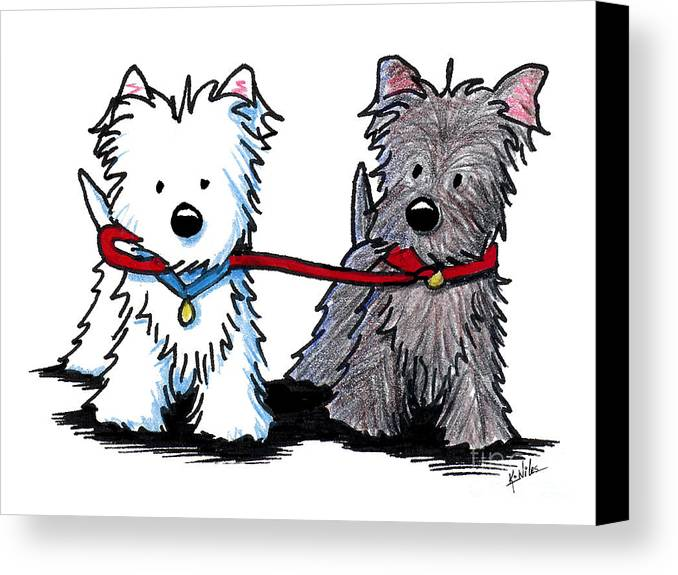 Westie Canvas Print featuring the drawing Terrier Walking Buddies by Kim Niles