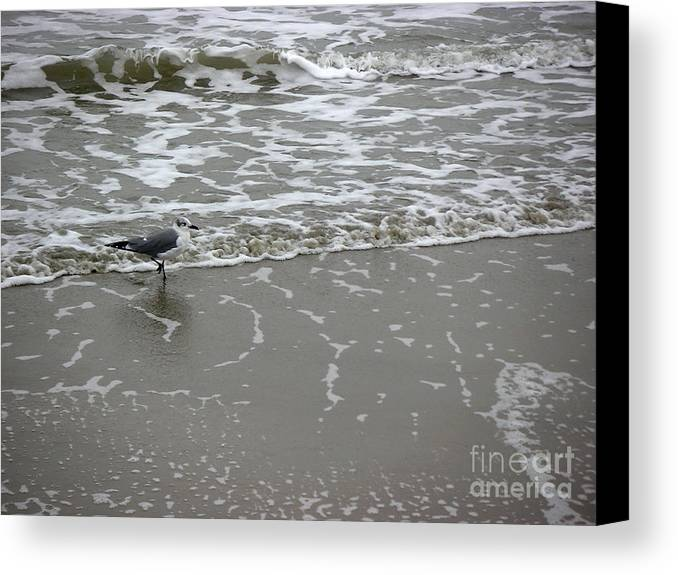 Nature Canvas Print featuring the photograph The Gulf In Shades Of Gray - On The Edge by Lucyna A M Green