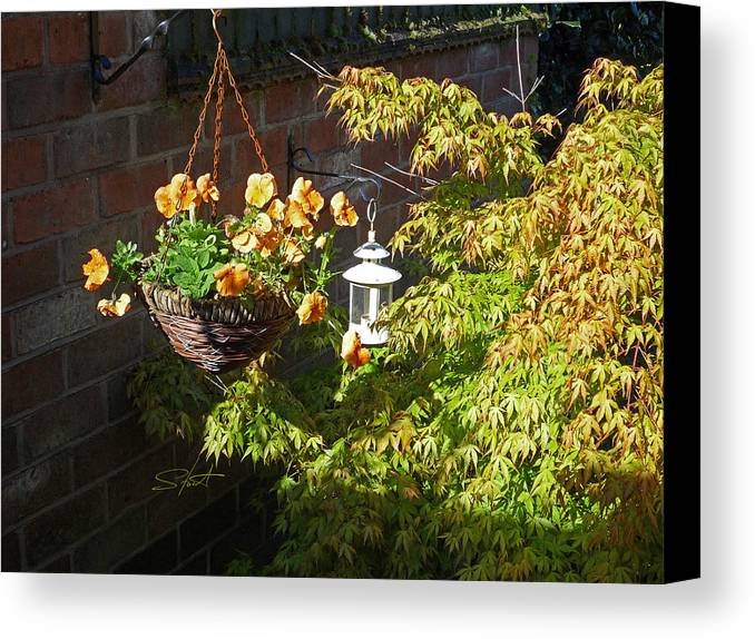 Hanging Basket Canvas Print featuring the photograph The Lantern by Charles Stuart