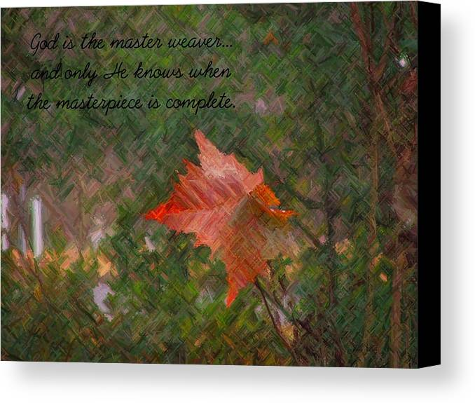Leaf Canvas Print featuring the photograph The Master Weaver by Judy Waller