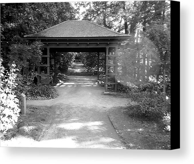 Path Canvas Print featuring the photograph The Path by Scarlett Royal