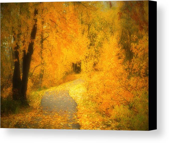 Autumn Canvas Print featuring the photograph The Pathway Of Fallen Leaves by Tara Turner