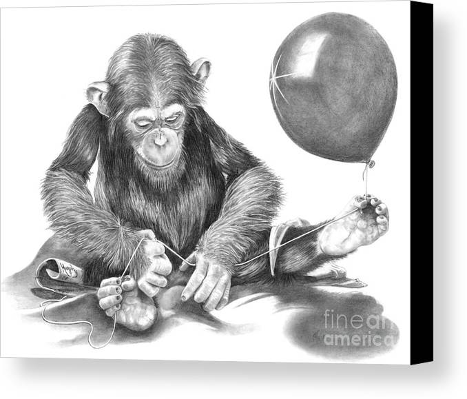 Pencil Canvas Print featuring the drawing The String Theory by Murphy Elliott