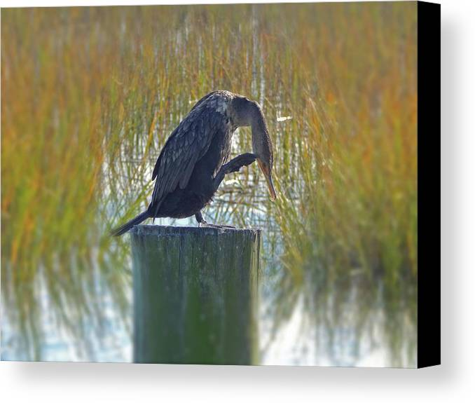 Canvas Print featuring the photograph The Thinker by Gerald Monaco