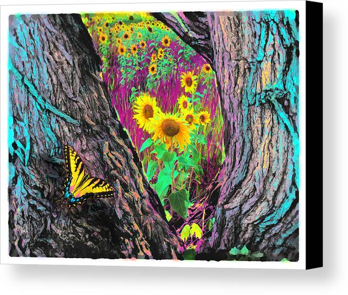 Butterfly Posters Canvas Print featuring the photograph Through The Trees by Gina Signore