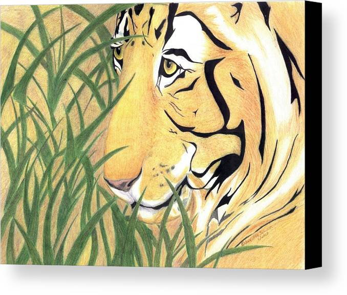Tiger Canvas Print featuring the drawing Tiger Traveler - Www.jennifer-d-art.com by Jennifer Skalecke