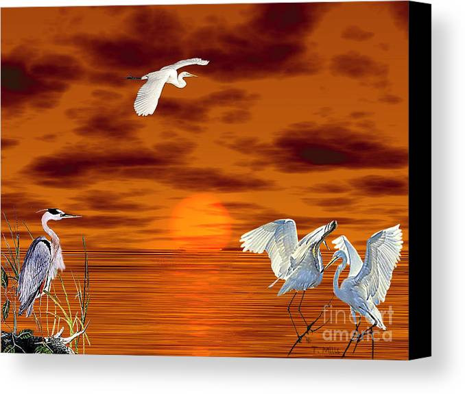Egret Canvas Print featuring the digital art Tropical Birds And Sunset by Terri Mills