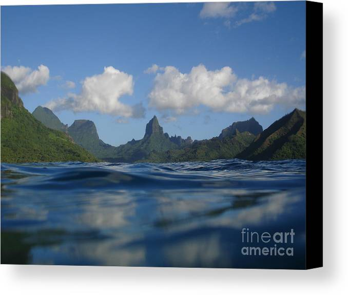 Landscape Canvas Print featuring the photograph Turtle View Of Paradise by Chad Natti