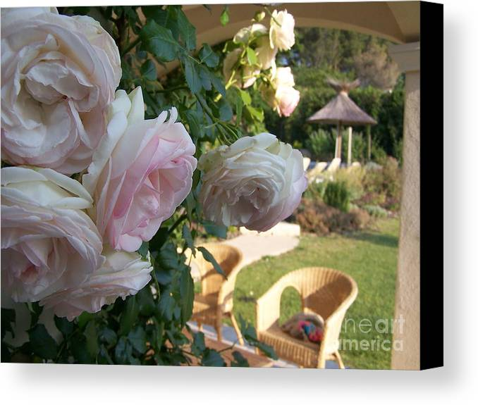 Roses Canvas Print featuring the photograph Villa Roses by Nadine Rippelmeyer