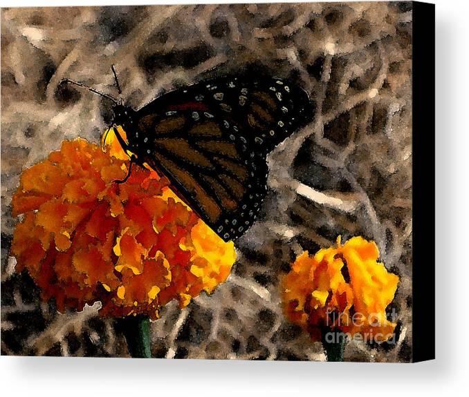 Monarch Canvas Print featuring the photograph Watercolor Monarch by PJ Cloud
