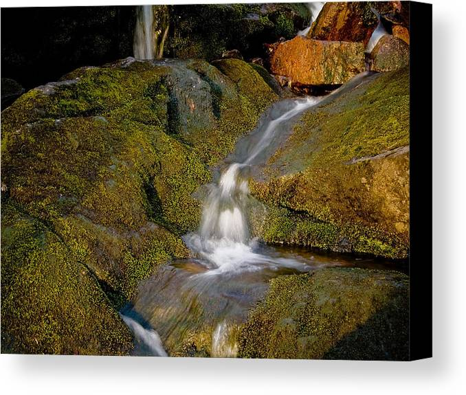 Waterfall Canvas Print featuring the photograph Waterfall At Dawn by Jim DeLillo
