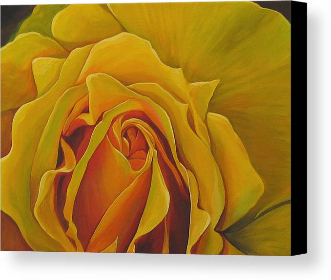 Yellow Rose Canvas Print featuring the painting Where The Rose Is Sown by Hunter Jay