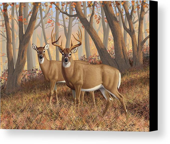 Deers Canvas Print featuring the digital art Whitetail Deer Painting - Fall Flame by Crista Forest