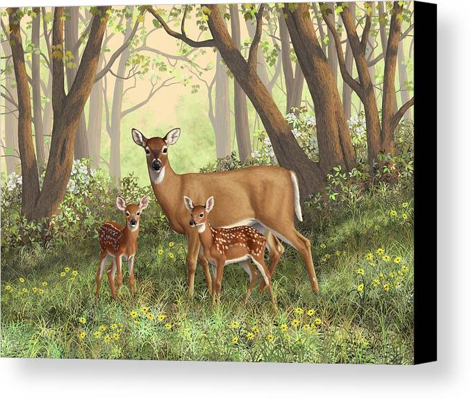 Whitetail Deer Canvas Print featuring the painting Whitetail Doe And Fawns - Mom's Little Spring Blossoms by Crista Forest