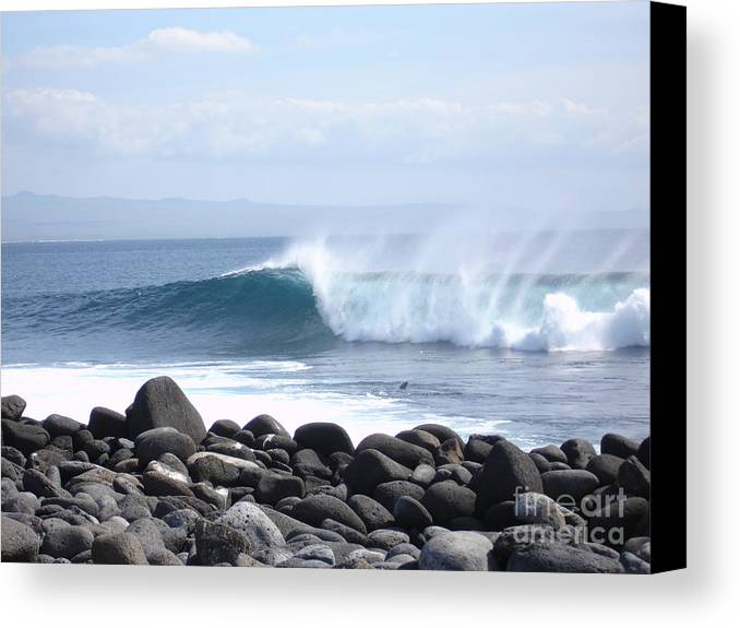 Landscape Canvas Print featuring the photograph Wild Wave by Chad Natti