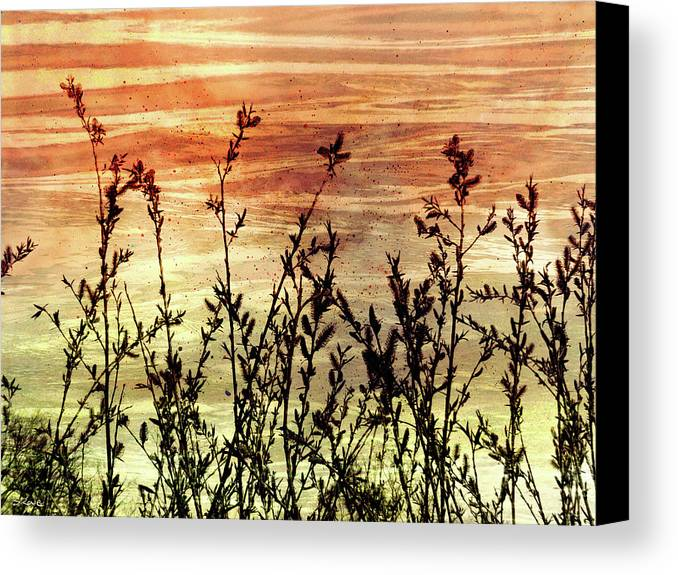 Wildflowers On Copper Canvas Print featuring the digital art Wildflower Sunrise by Shawna Rowe