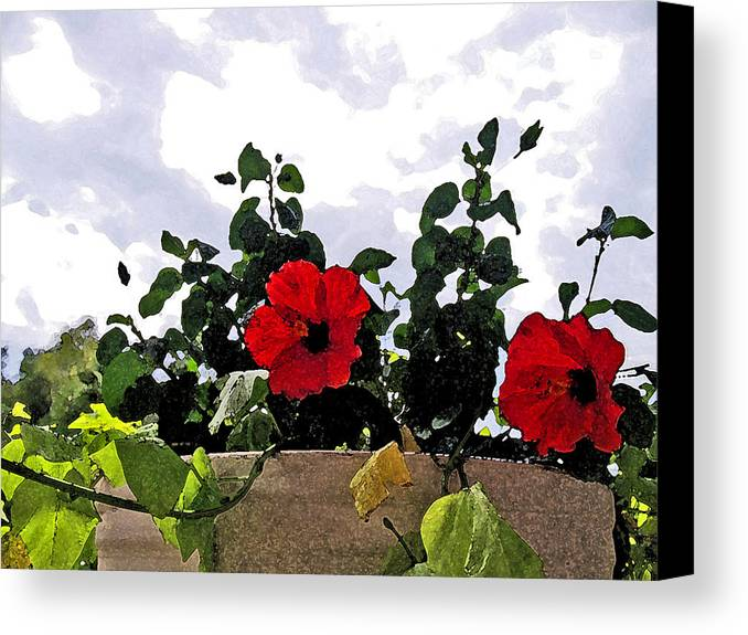 Floral Canvas Print featuring the digital art Window Flowers by James Granberry