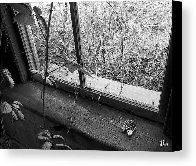B/w Canvas Print featuring the photograph Window Of The Past by Michele Caporaso