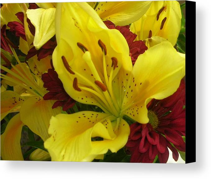 Yellow Iris Canvas Print featuring the photograph Yellow Floral by Nancy Ferrier