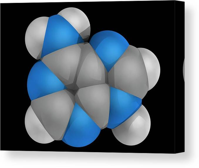 Artwork Canvas Print featuring the photograph Adenine Molecule by Laguna Design/science Photo Library