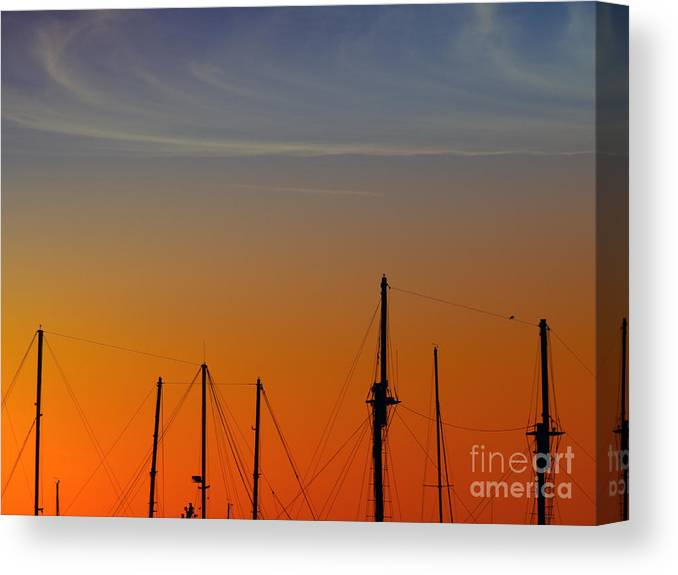 Sea Canvas Print featuring the photograph Sailing Boats by Stelios Kleanthous