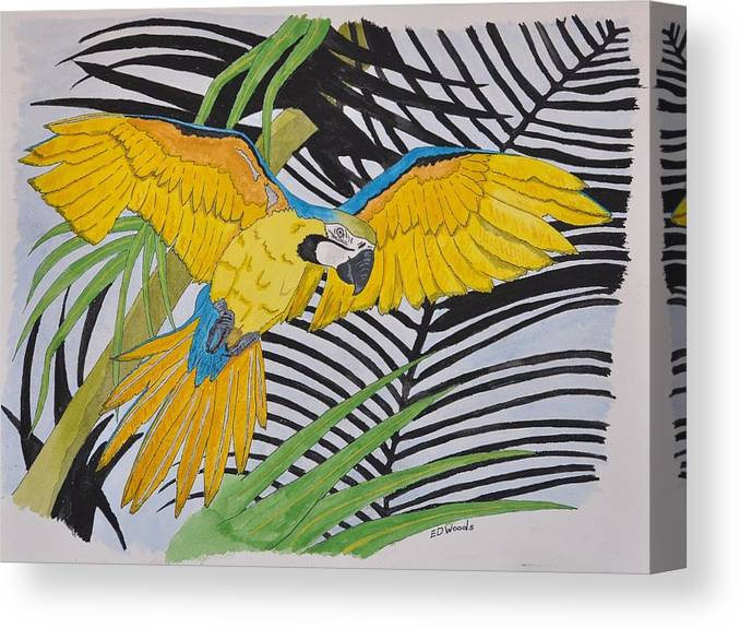 Macao Canvas Print featuring the painting Ara Ararauna by Eddie Woods