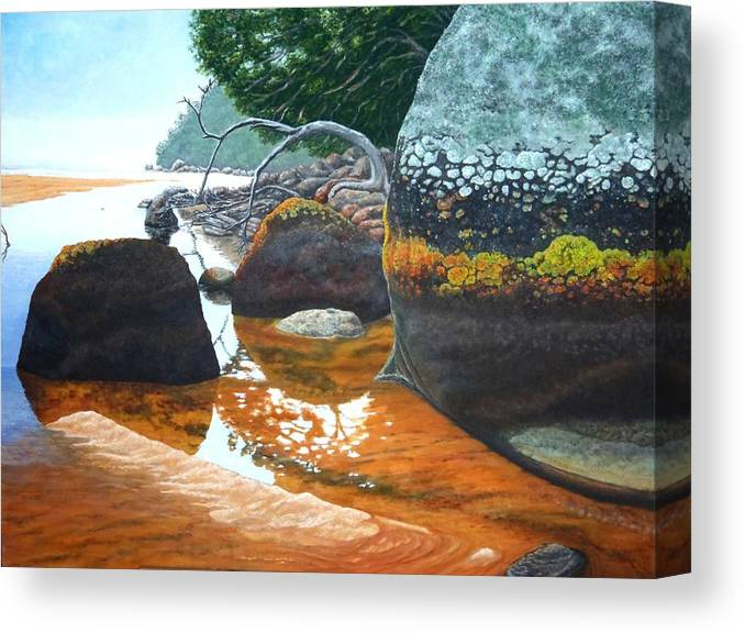 Australia Canvas Print featuring the painting Sealers Creek by Nigel Necklen