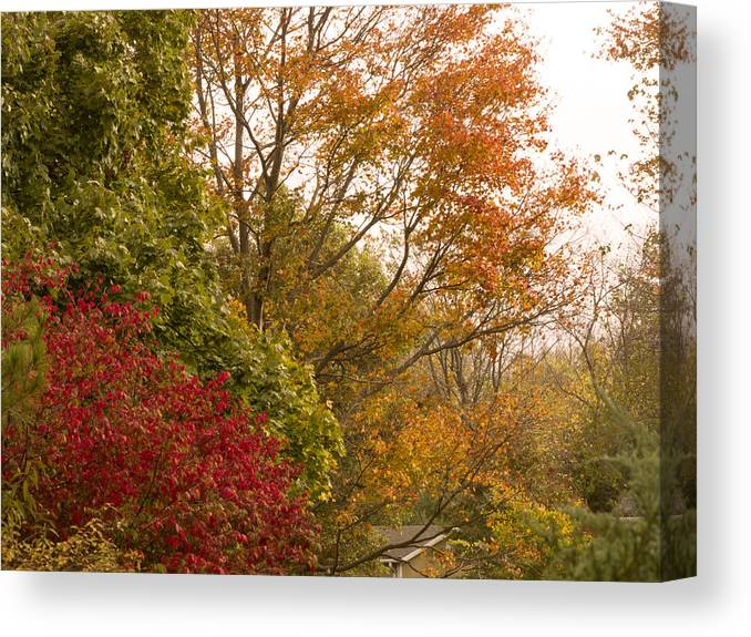 Phil Welsher Canvas Print featuring the photograph Autumn Comes To The Burbs by Phil Welsher