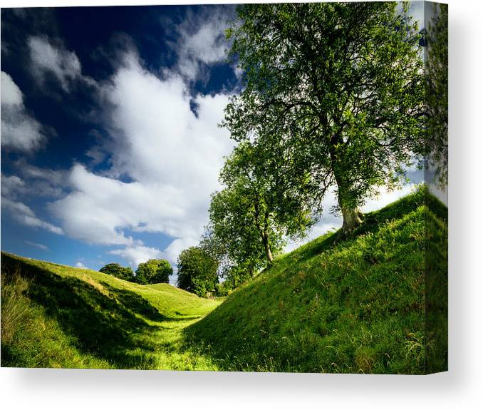Tree Canvas Print featuring the photograph Avebury Hillside by Julian Cook