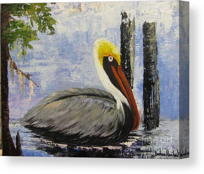 Brown Pelican Canvas Print featuring the painting Brown Pelican Revisited by Barbara Haviland