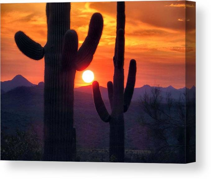 Sunset Canvas Print featuring the photograph Earth's Shadow by Jim Romo