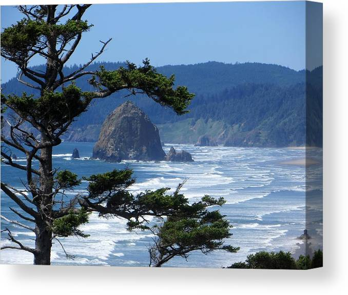 Coastal Canvas Print featuring the photograph Haystack Rock by Jim Romo