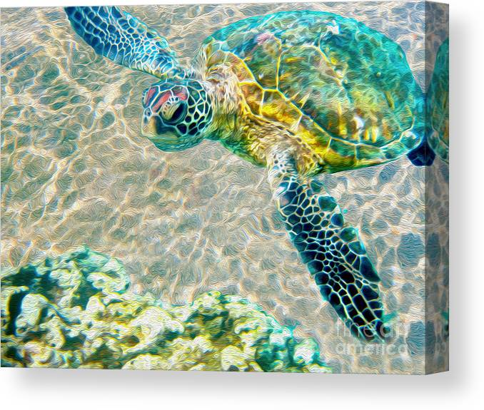 Caribbean Sea Turtle Canvas Print featuring the mixed media Beautiful Sea Turtle by Jon Neidert